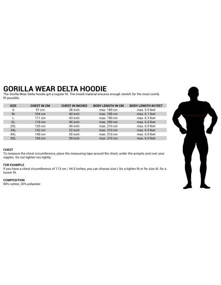 Delta Hoodie